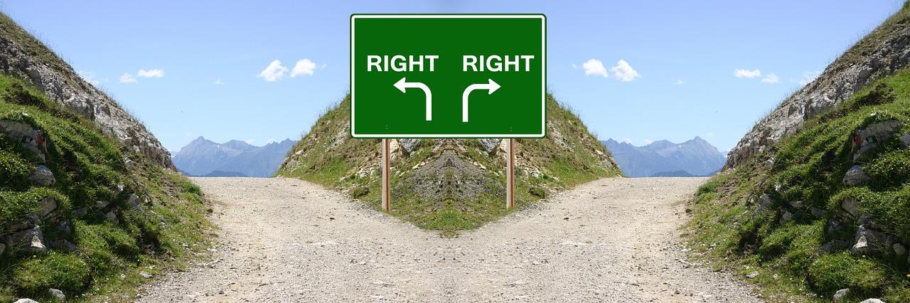 転職の企業の選び方で迷ったら?選ぶ基準をプロが解説!